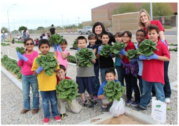 "March 2013: AMAZING lettuce planted, grown and harvested in the ""Garden of Learning,"" Gary A Knox Elementary School, Crane, Arizona"