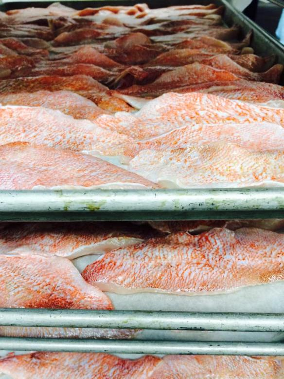 Fresh Acadian Redfish Fillets, 2 oz. each
