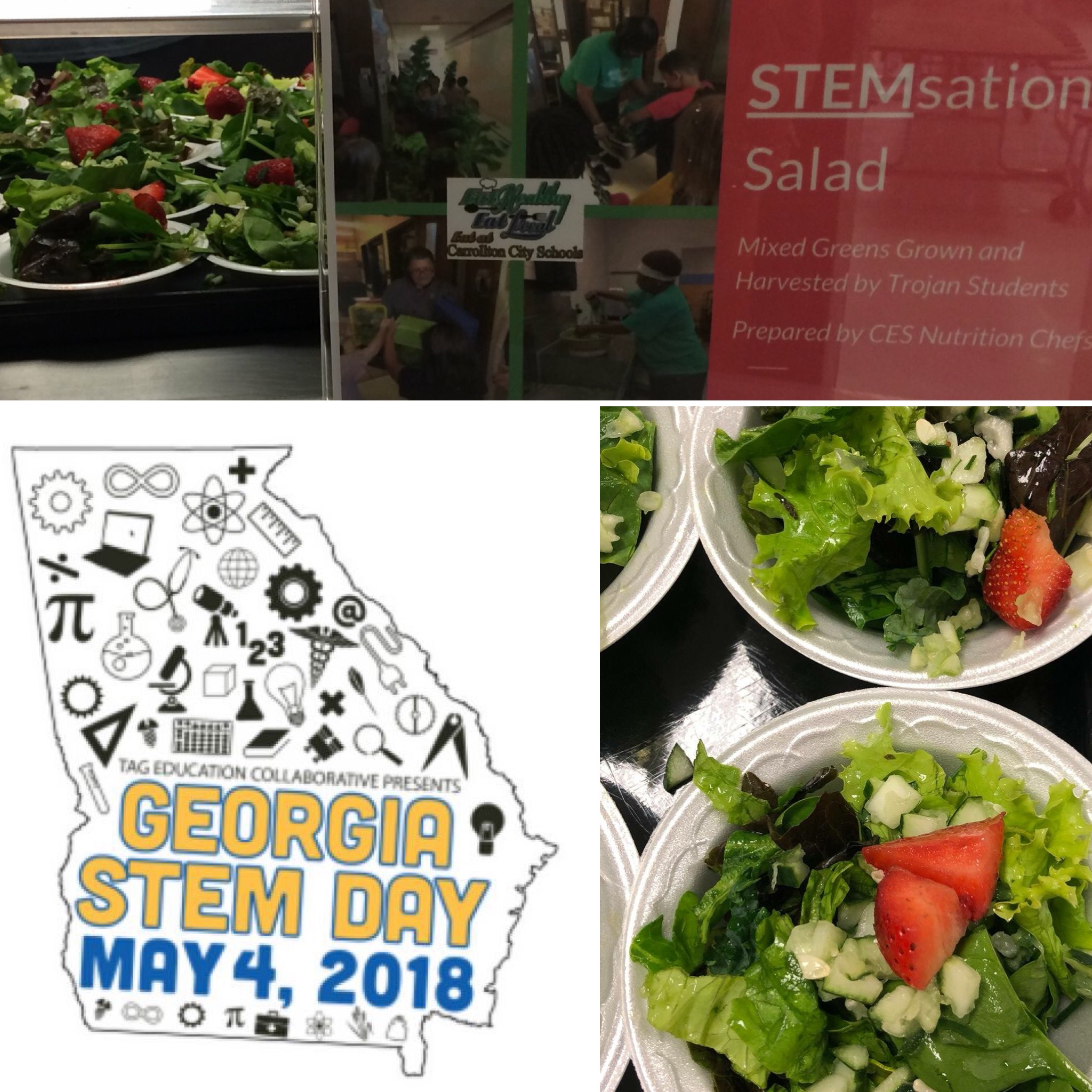 Stem Sensational Salad